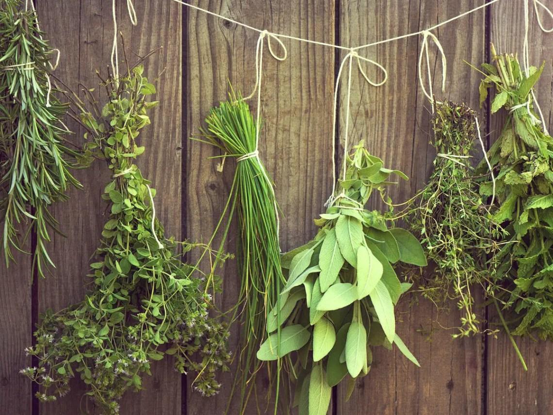 9. hanging herb