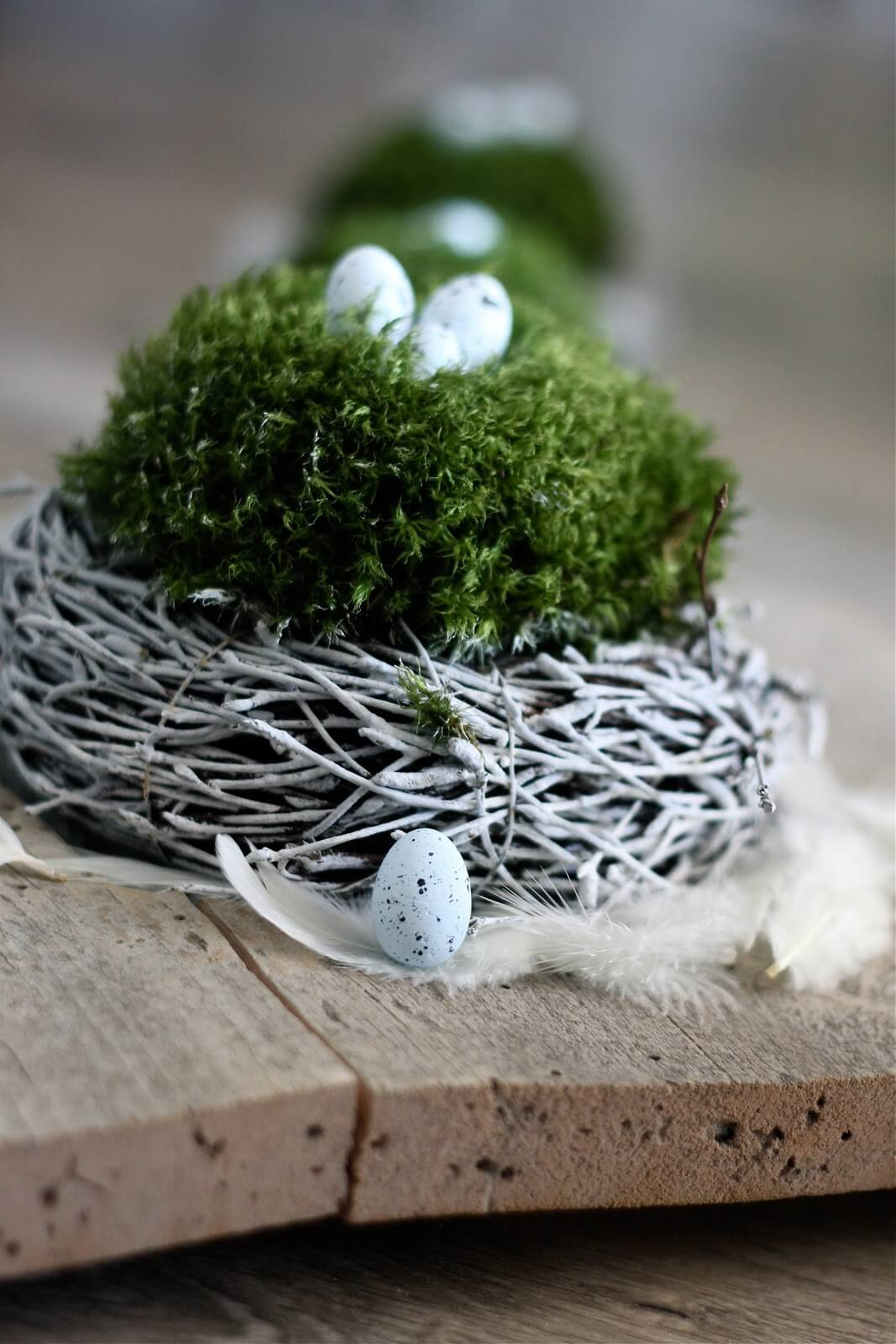 Petite & sweet spring bird nests