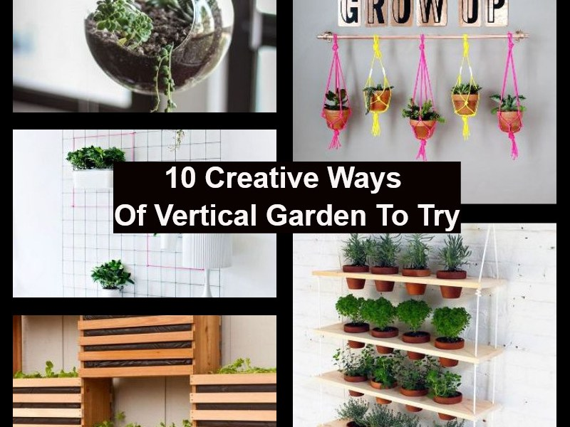Creative ways of vertical garden to try