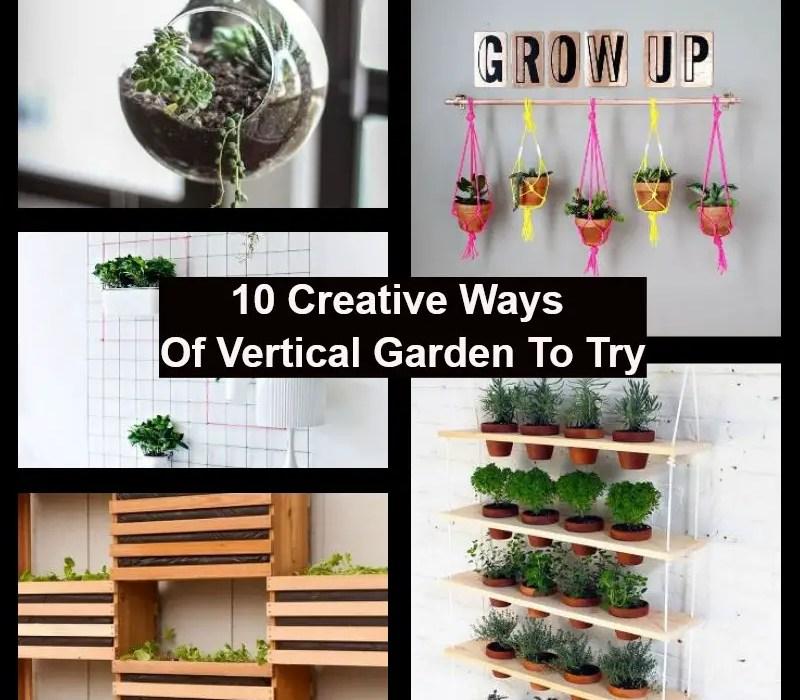 Creative ways of vertical garden to try
