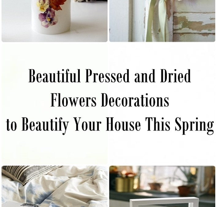 Beautiful Pressed and Dried Flowers Decorations to Beautify Your House This Spring