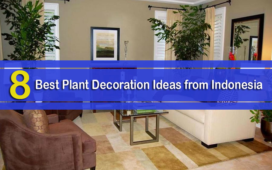 8 Best Plant Decoration Ideas from Indonesia