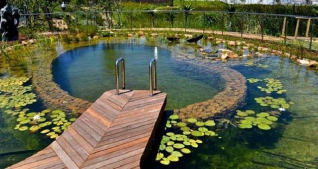 Small swimming pool 8