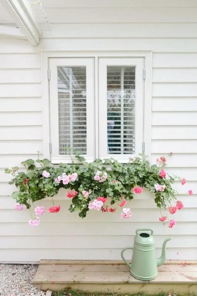Subtle white window box