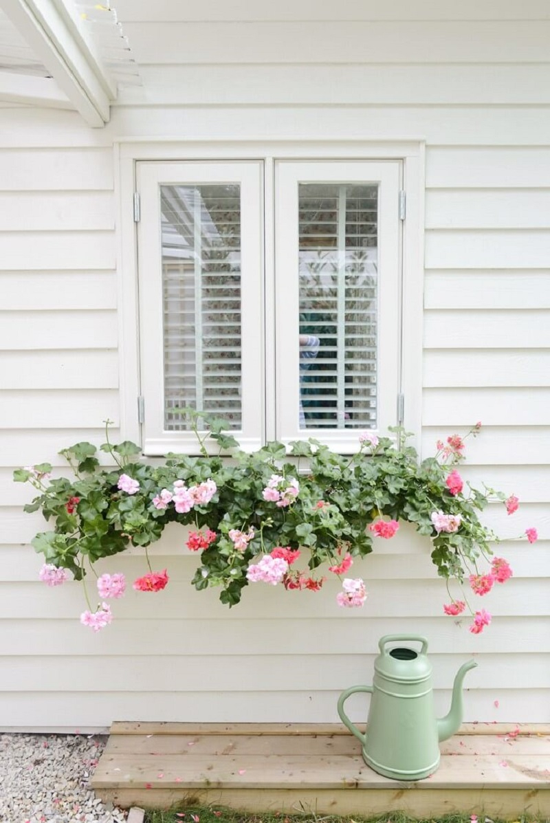 Subtle white window box