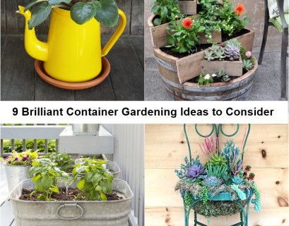 9 brilliant container gardening ideas to consider