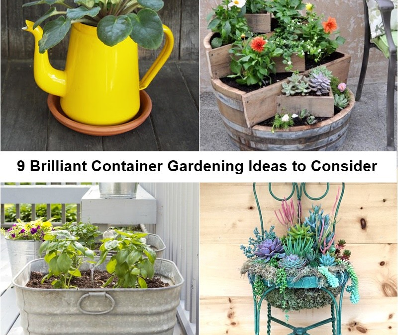9 Brilliant Container Gardening Ideas to Consider