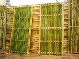 Bamboo fence ideas for small houses 02