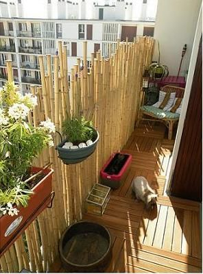 Bamboo fence ideas for small houses 19