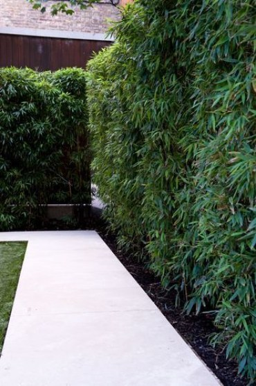 Bamboo fence ideas for small houses 47