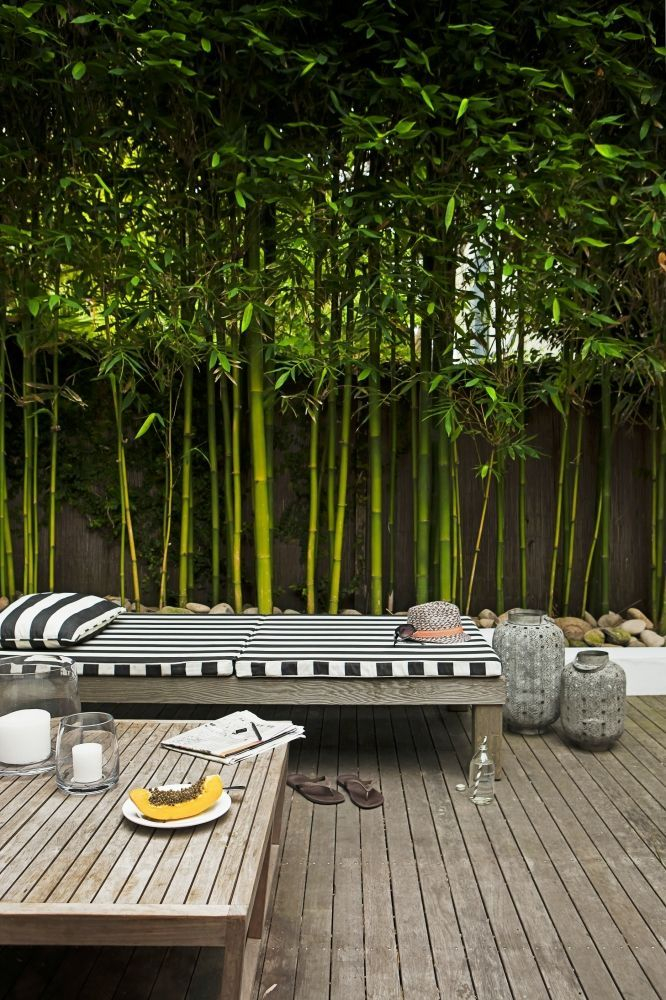 Bamboo fence ideas for small houses 56