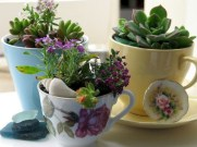 Colorful winter planters for your outdoor decorations 24