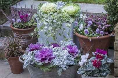 Colorful winter planters for your outdoor decorations 36