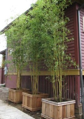 Beautiful yet functional privacy fence planter boxes ideas 03