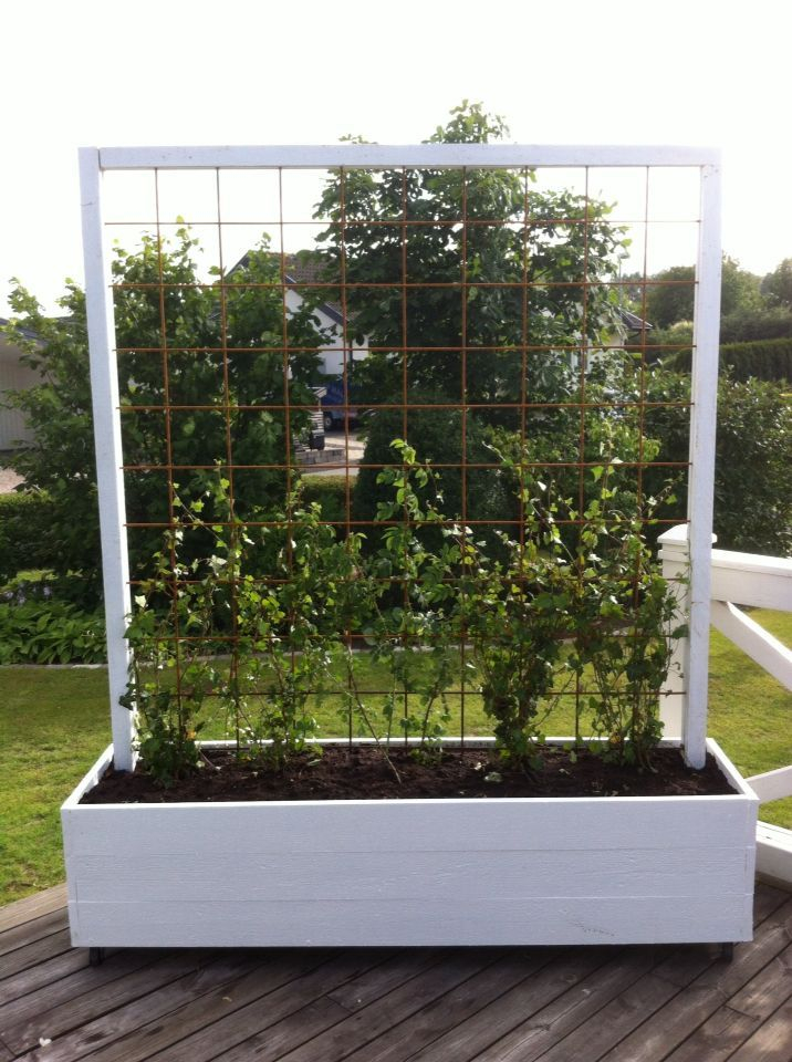 Beautiful yet functional privacy fence planter boxes ideas 54