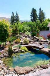 Design a fish pond garden with a waterfall concept 04
