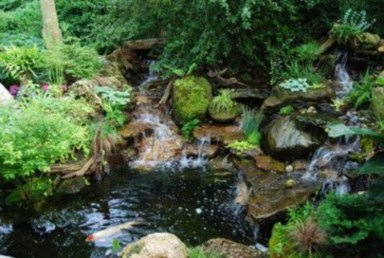 Design a fish pond garden with a waterfall concept 34