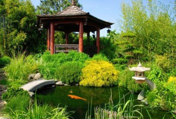 Design a fish pond garden with a waterfall concept 41