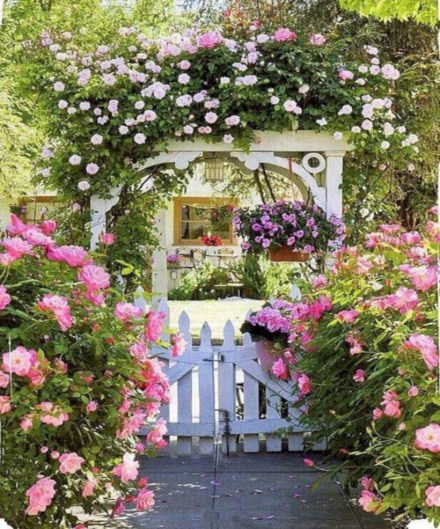 Amazing rose garden ideas in this year 02