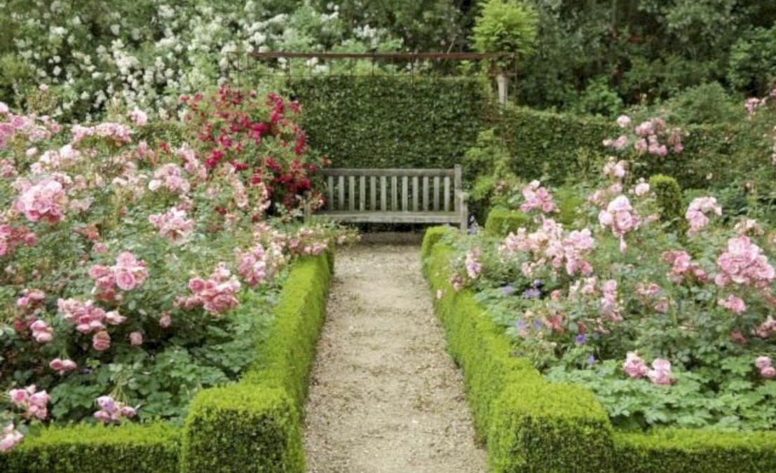 47 Amazing Rose Garden Ideas on This Year