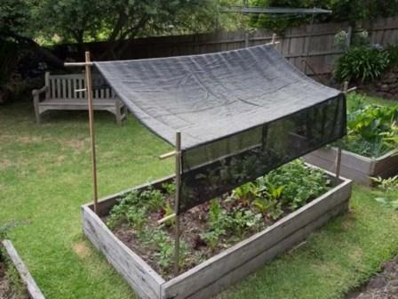 Diy garden design project in your home 34