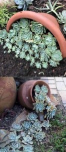 Diy garden design project in your home 36