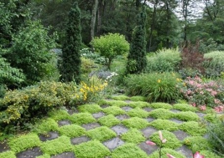 Garden design that is refreshing and comfortable 09