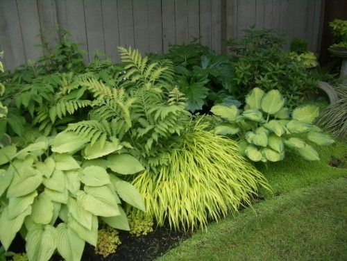 Garden design that is refreshing and comfortable 21