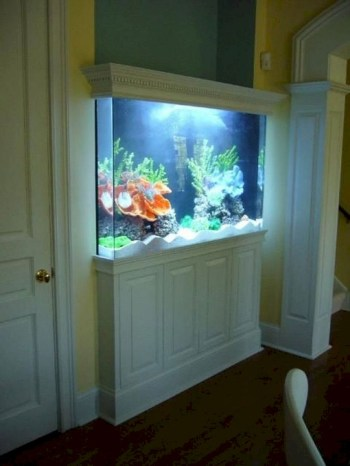 Aquarium design ideas that make your home look beauty 16