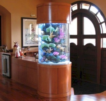 Aquarium design ideas that make your home look beauty 20