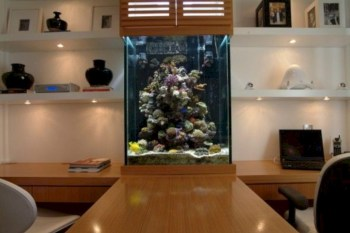 Aquarium design ideas that make your home look beauty 29