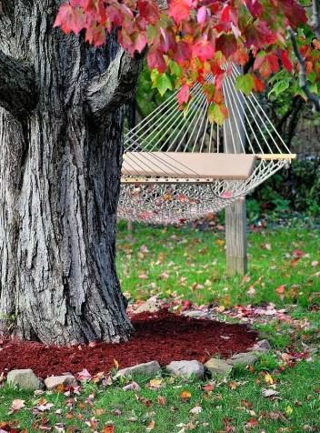 Backyard-hammock-hang-it-in-backyard
