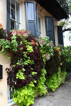 Exterior decoration ideas with flower in window 39