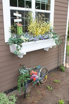 Exterior decoration ideas with flower in window 46