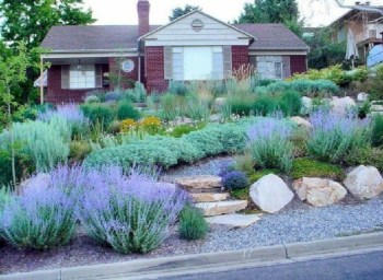Front yard design ideas on a budget 01
