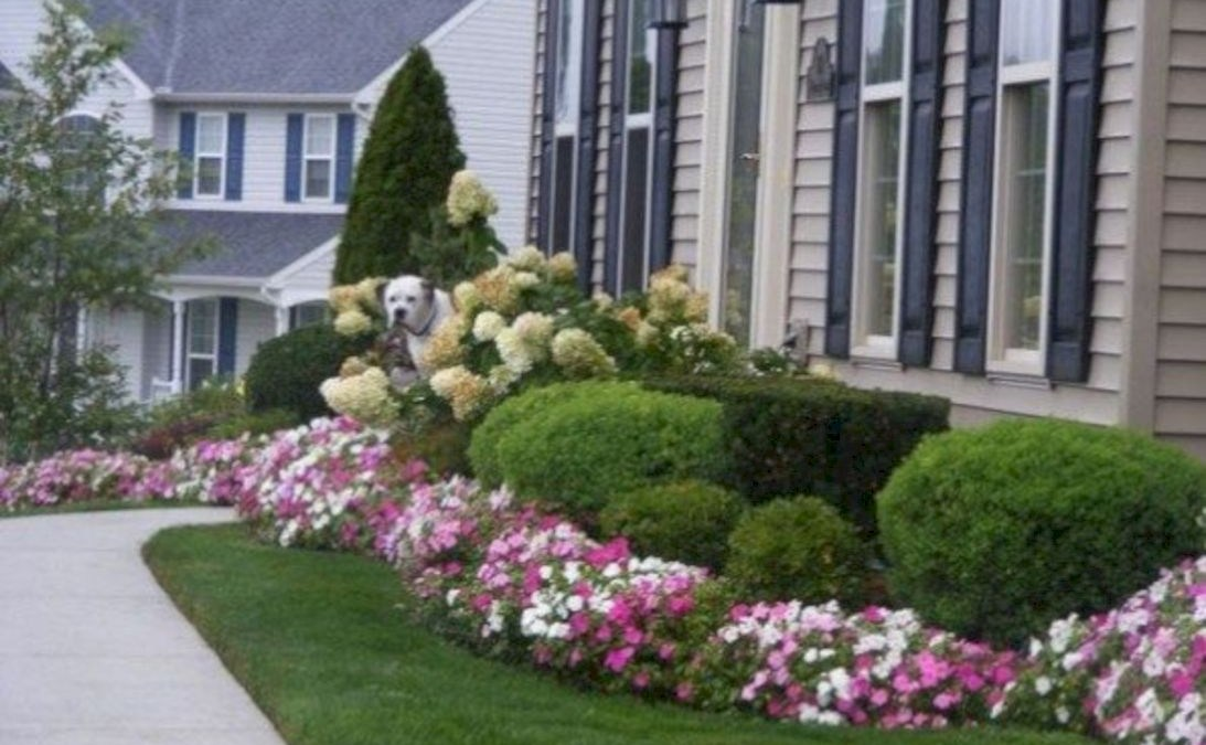 Front yard design ideas on a budget 27