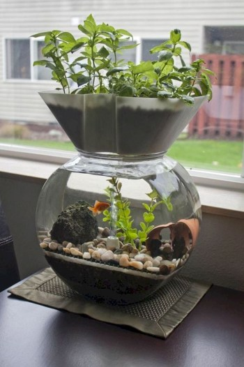 Indoor water garden ideas that fresh your room 10