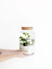 Indoor water garden ideas that fresh your room 11