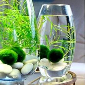 Indoor water garden ideas that fresh your room 13
