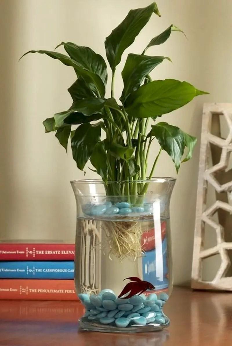 Indoor water garden ideas that fresh your room 22