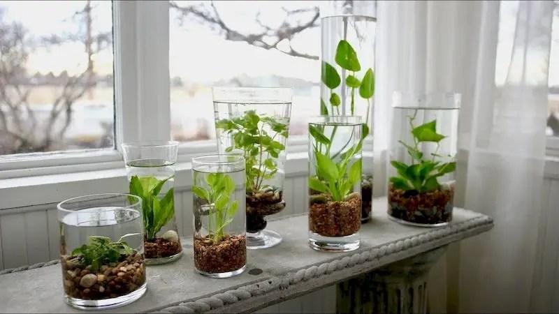 Indoor water garden ideas that fresh your room 26