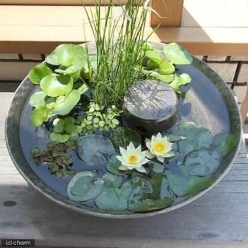 Indoor water garden ideas that fresh your room 33