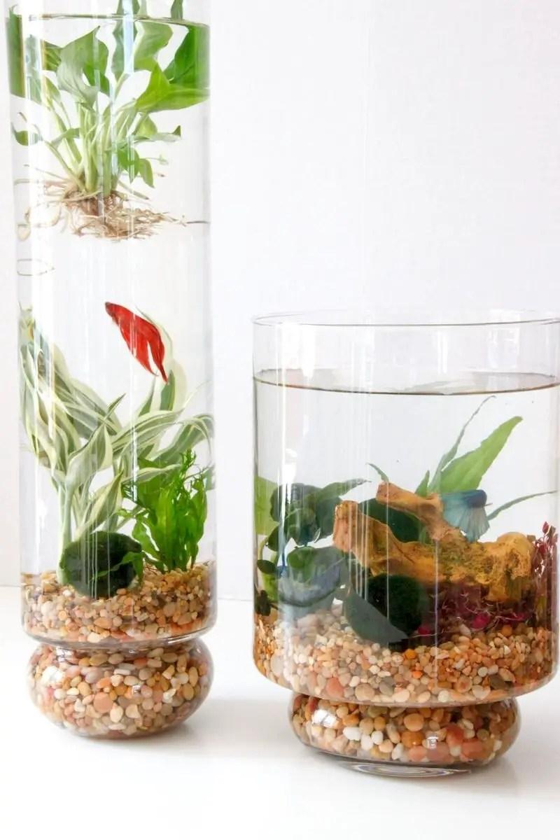 Indoor water garden ideas that fresh your room 42