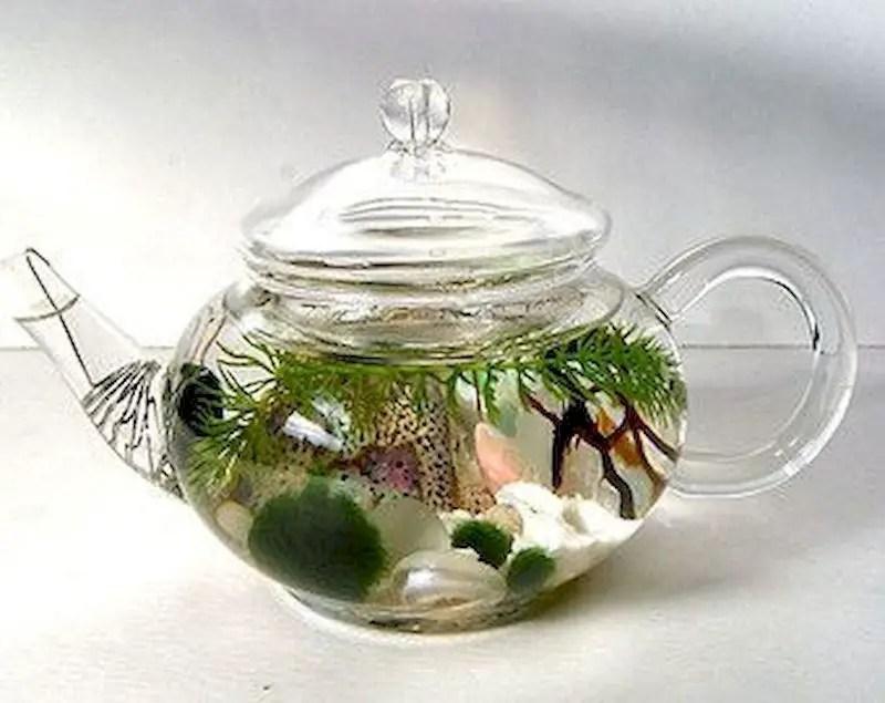 Indoor water garden ideas that fresh your room 51