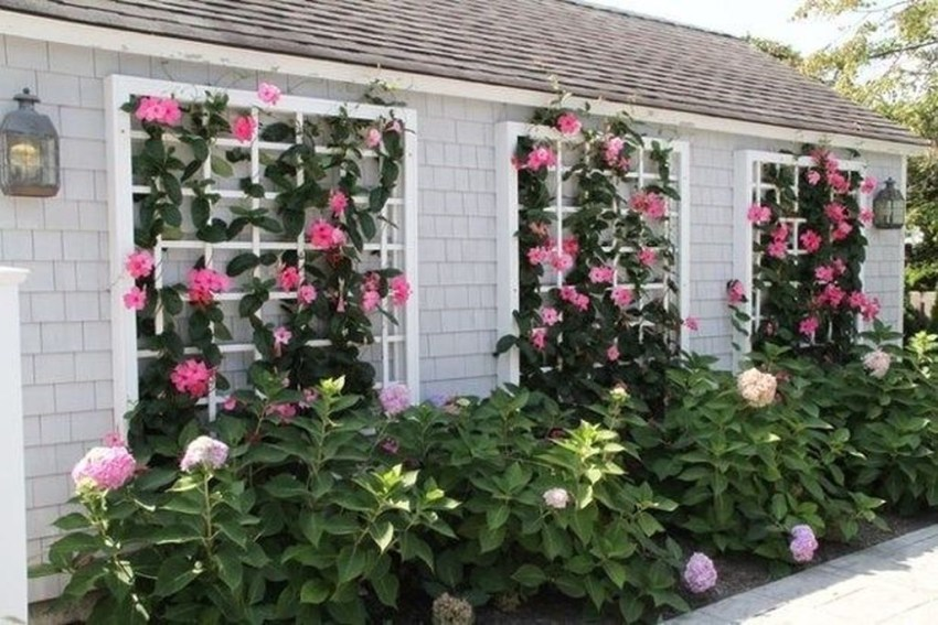 Best front yard design ideas for summer in your home 11