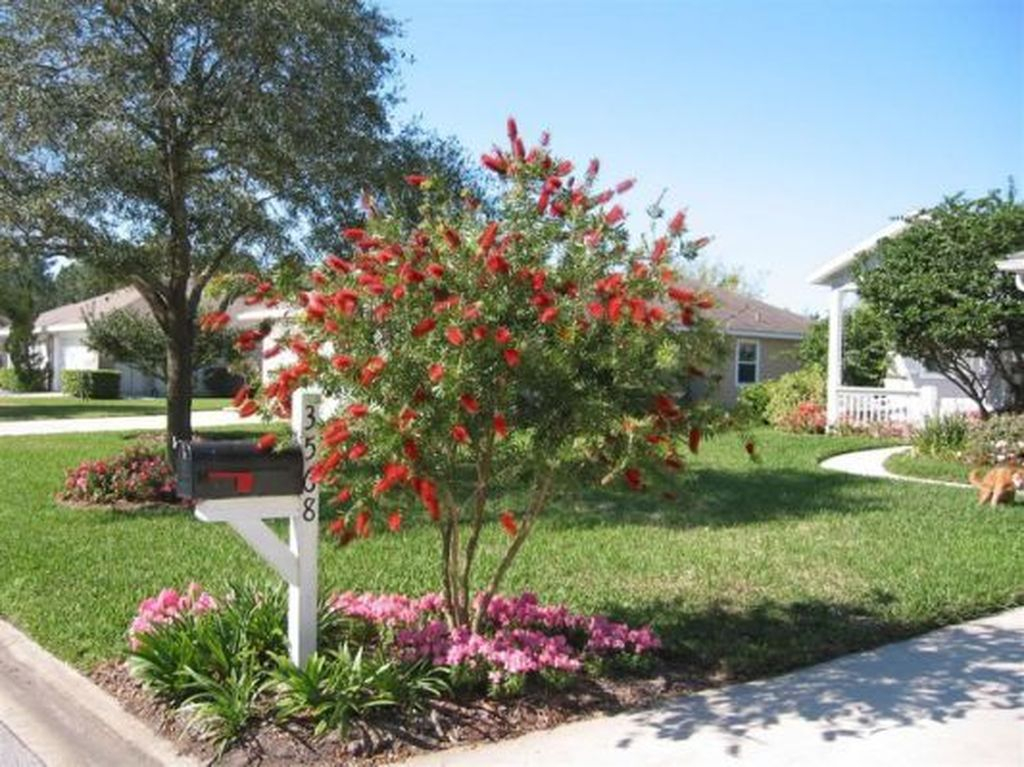 Best front yard design ideas for summer in your home 55