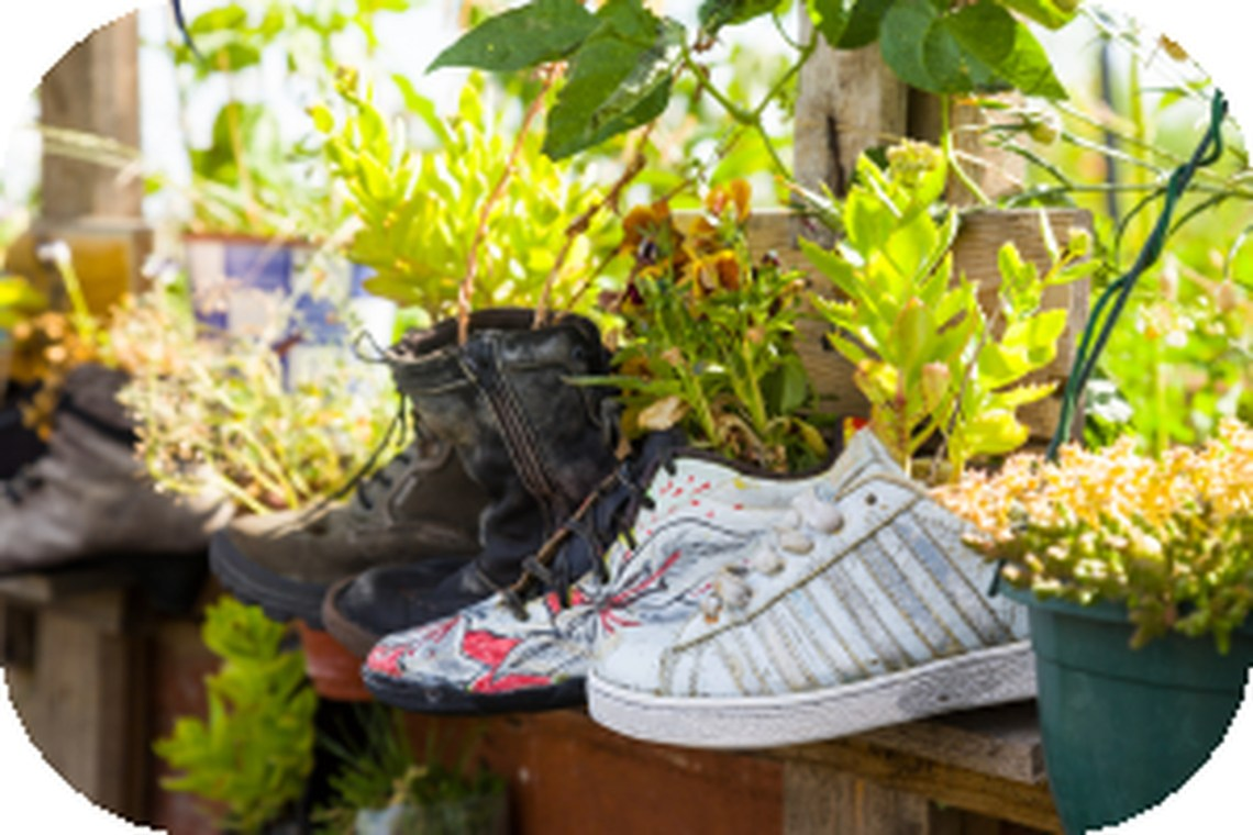 Amazing unused items crafts with shoes that become plant pots for your garden