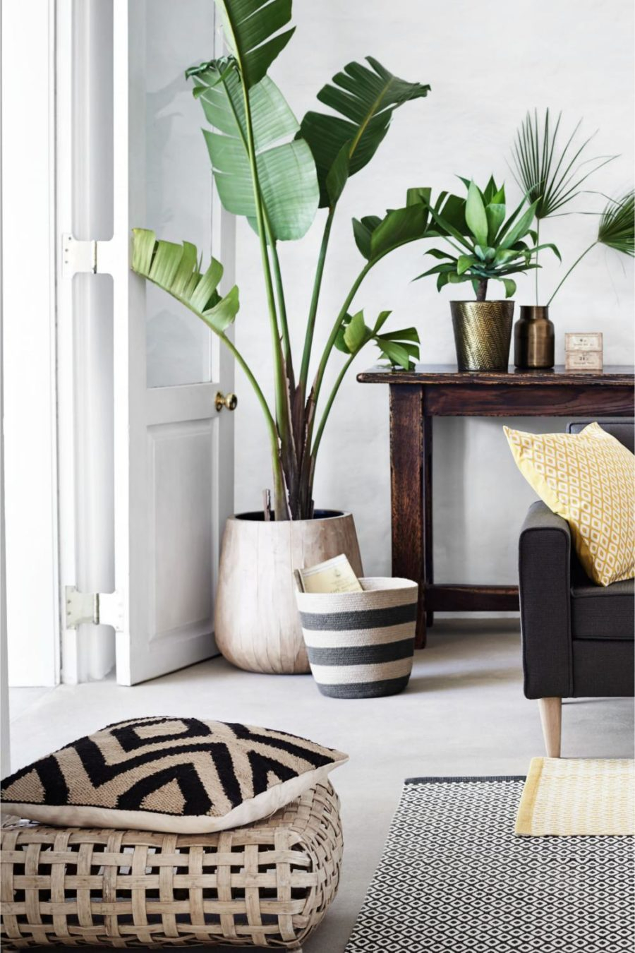 An elegant natural living room with greenery at the corner to create freshness to your room