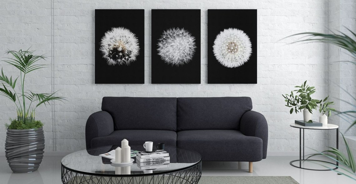 Interesting white living room ideas with white walls, white floors, black sofas, black round tables, plants in pots that make it more natural