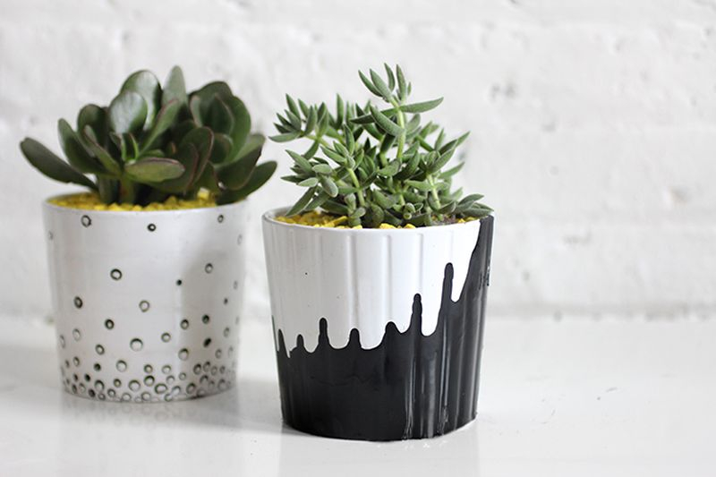 Gorgeous painted pot plants with plants decoration to beautify your garden